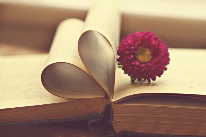 livro-amor